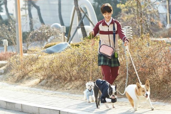 Cinderella and the Four Knights - Park So Dam
