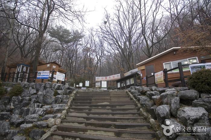 Premiers feuillages de l'automne coréen