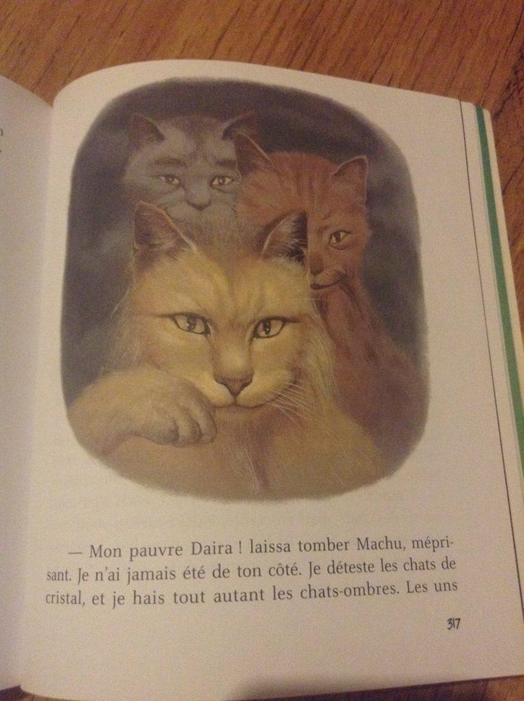 L'école des chats, tomes 4 et 5