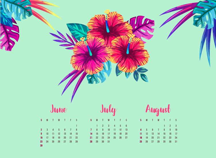 Festivals d'été 2019
