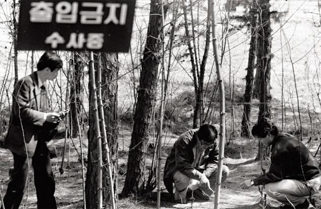 tueur de gyeonggi faits divers légendes