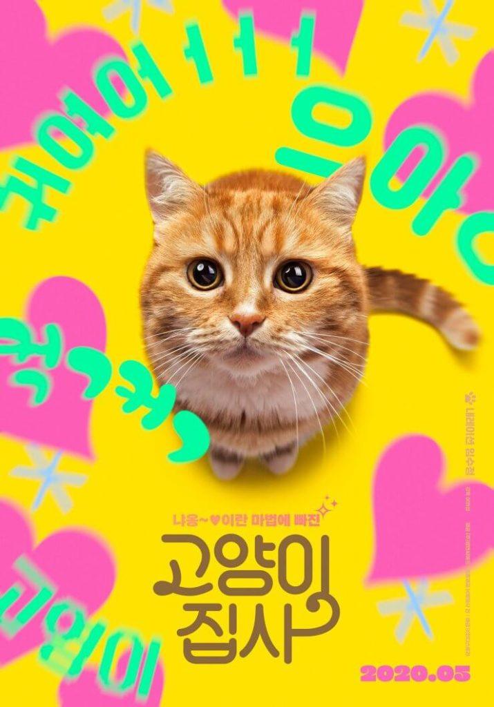 Sorties films du mois Mai 2020 - Our Cat